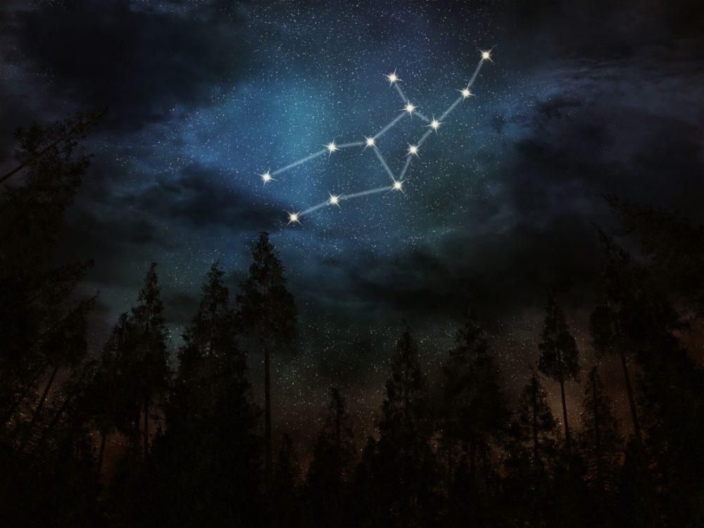 Virgo Constellation: The Night Sky's Virgin